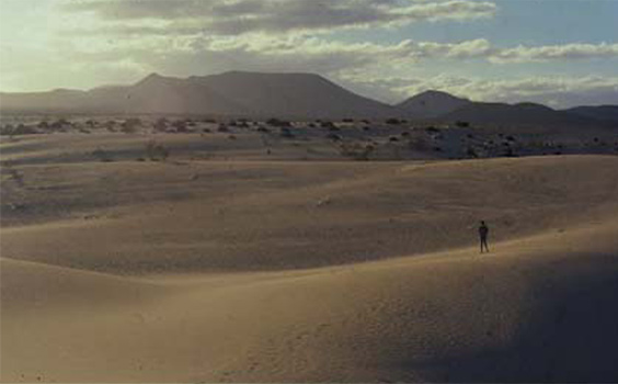 1999 – Corralejo, Fuerteventura, Canary Islands (Spain). Looking for birds in the amazing Corralejo Dunes, during some family holidays